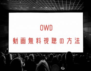 OWDの動画を無料で見れる動画配信まとめ